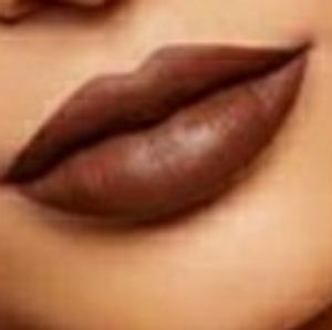 Brand New Anastasia Liquid Lipstick Color Taboo